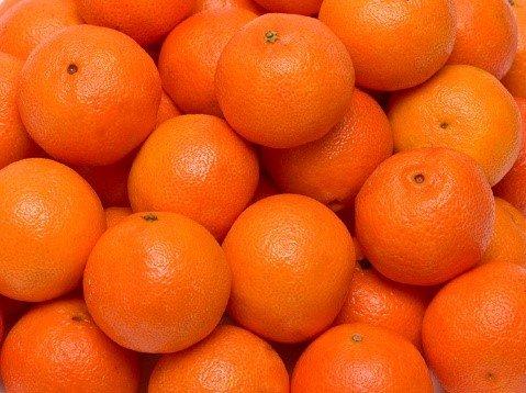 citricos condiciones climaticas semitropicos 2